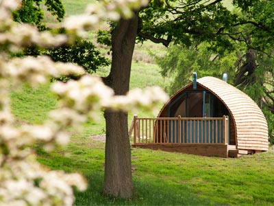 Picturesque glamping cabin
