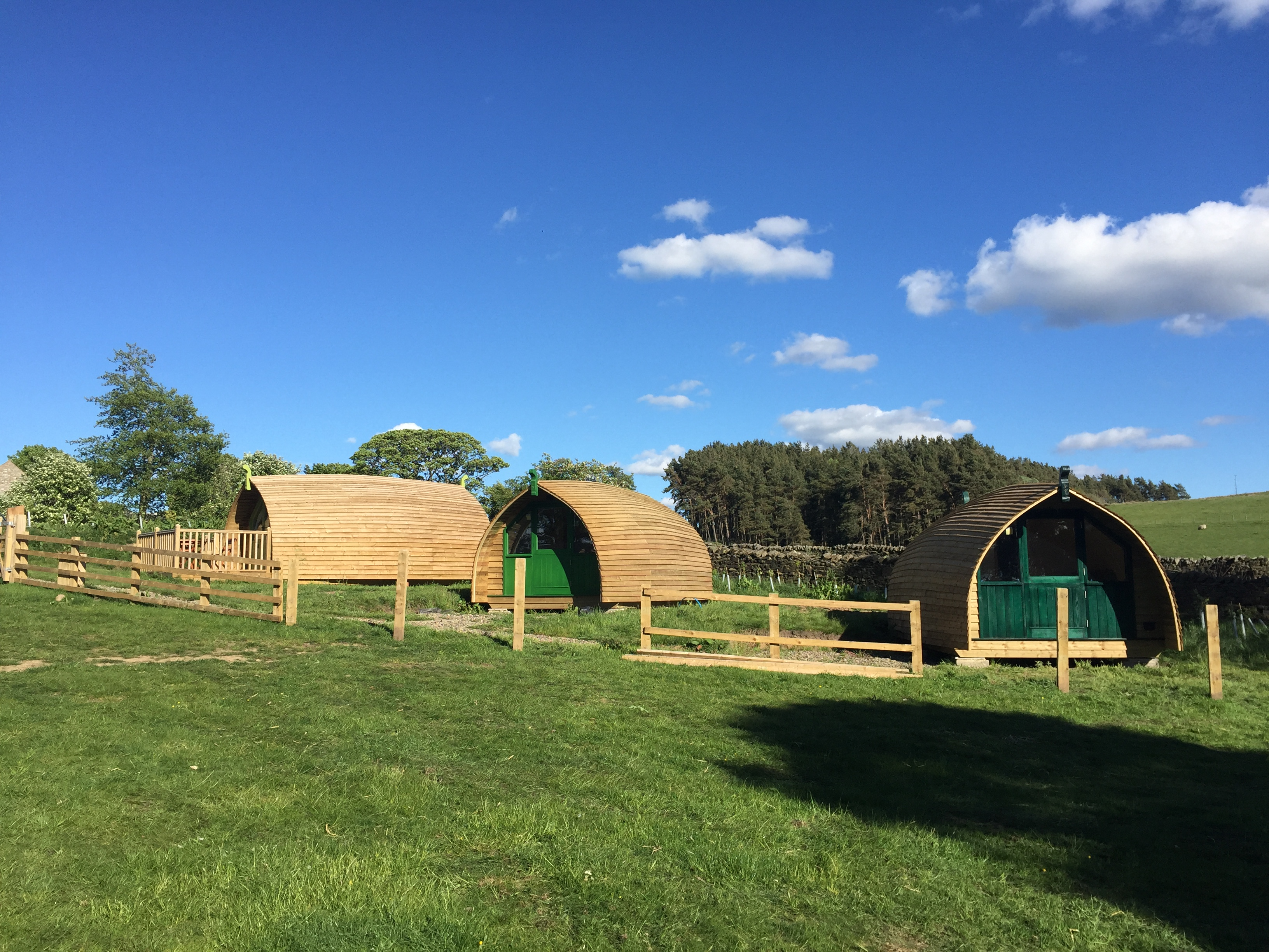 The new cabins on site